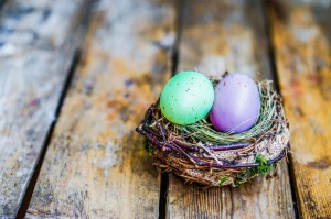 Easter eggs in the nest on rustic wooden background