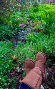 Boots over creek