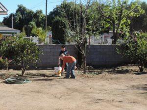 Brock & Brandon chores