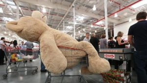 costco-bear